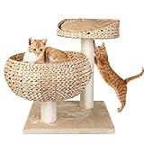 Zoom IMG-2 pedy tiragraffi per gatti giocattolo