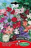 Germisem Royal Mix Semillas de Guisantes Dulces 4 g