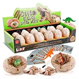 LUKAT Dinosaur Toys for 5 Year Old Boys, Dinosaur Eggs Dino Dig Kits 12 PCS Dinosaurs Excavation Toy Gifts Theme Party Favors for 5-12 Year Old Boys and Girls