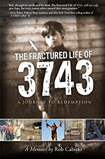 The Fractured Life of 3743: A Journey to Redemption