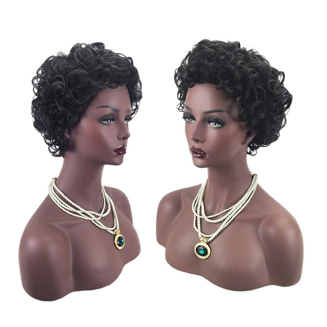概要マッサージ地殻短い勾配かつらカーリー波状かつら女性用かつらキャップローズネットかつらグルーレスかつら子供のための合成かつらハロウィン衣装(OM-149)