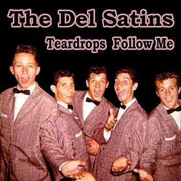 Teardrops Follow Me