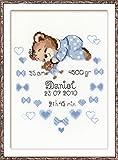 Riolis Kit de Punto de Cruz Certificado de Nacimiento (Niño)