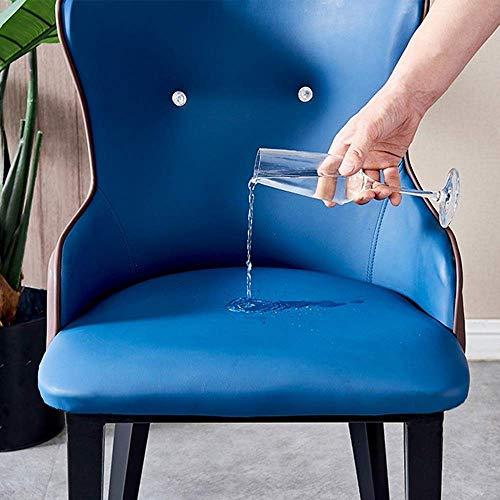 N&O Renovierungshaus Esszimmerstühle Bürostuhl Nordic Dining Chair Light Simple Rest Chair Restaurantstühle (Color : Blue Size : 47x43x83cm)