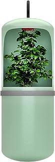 DFFng Fuente de Agua Potable automática para Reptiles, Lagarto, camaleón, dispensador de alimentación, terrario, Anfibio