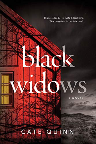 Image of Black Widows: A Domestic Thriller