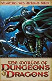 The Worlds of Dungeons & Dragons Volume 1 (v. 1)