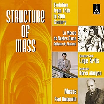 Architectonic of Maas