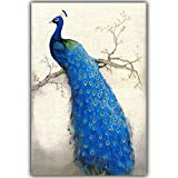 ZONGZ Leinwandbild,Elegante Blaue Pfau Tierlandschaft