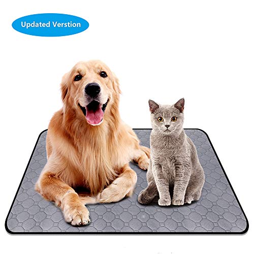 Best Price Puppy Training Pad