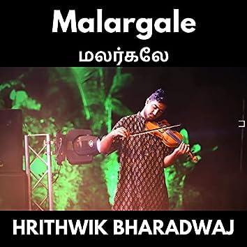 Malargale (Violin Solo)