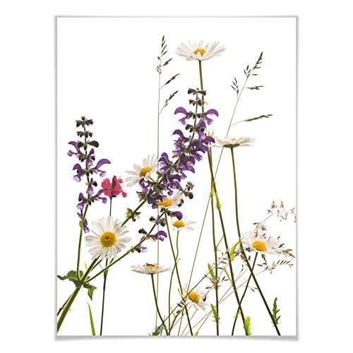 Poster Tan Kadam - Flora Marguerite muurschildering bloemen weide natuur lente margrieten bloemen wilde planten fotografie zonder toebehoren Wall-Art 100x120 cm multicolor