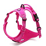 Chai's Choice Best Outdoor Adventure Dog Harness (Fuchsia X-Large)
