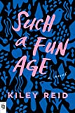 Such A Fun Age: A Novel