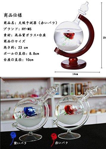 HY-MSストームグラス地球儀天気予報器結晶観察器室内装飾(母の日・バレンタイン・結婚記念日など様々なお祝いのシーンに最適)