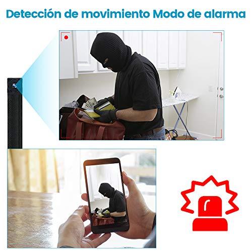 FTDLCD Cámaras espía