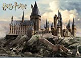 Tainsi Harry Potter Poster Hogwarts Tag,12x18inches,30x46cm