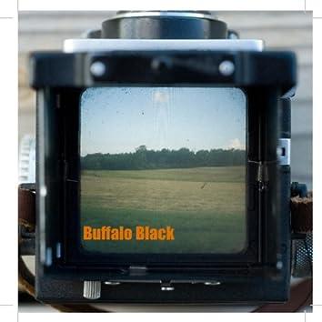 Buffalo Black