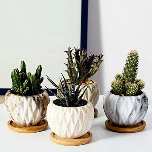 Set di 6 piattini per pentole in bambù, vassoio in bambù per piante, per giardino, in vaso, per interni ed esterni (6,5 cm).