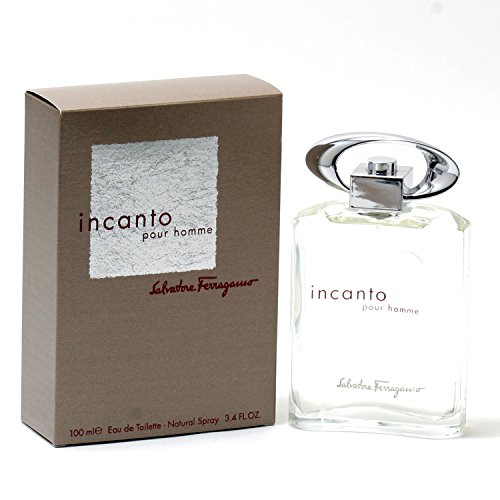 Salvatore Ferragamo Incanto Pour Homme 3.4 oz EDT Spray Mens New