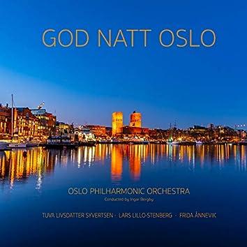 God natt Oslo