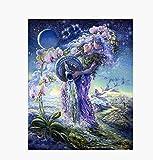DIY 5D Acuario Constelación Pintura de diamante digital Conjunto de mosaico de punto de cruz Mural Decoración de cocina Arte creativo hecho a mano 15,7 * 19,7 pulgadas