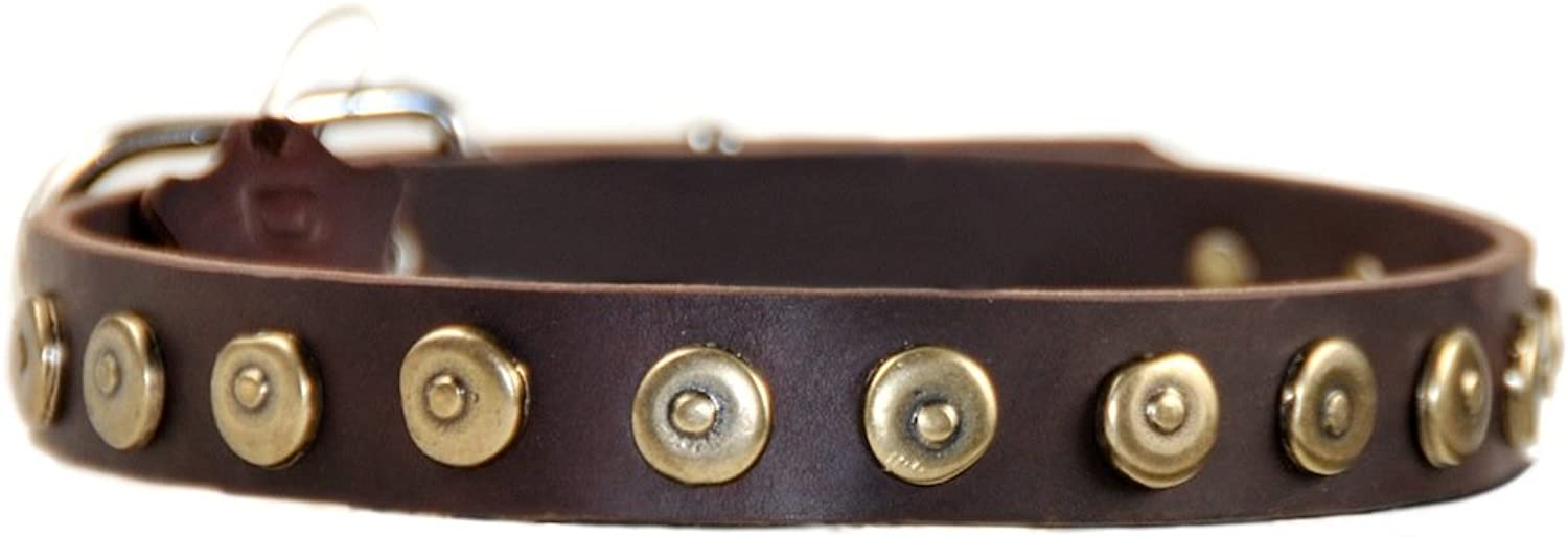 Dean and Tyler DOT MATRIX Dog Collar  Nickel Hardware  Brown  Size 51cm x 3cm Width. Fits neck size 18 Inches to 22 Inches.
