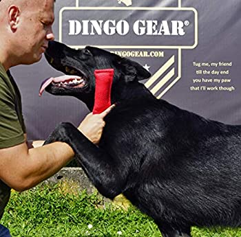 Dingo Gear Nylcot Jouet à Mordre pour Dressage de Chien K9 IGP IPO Schutzhund Blind Search Proy Drive Reward Fetch Recompense Fait Main en français