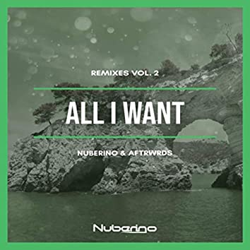 All I Want (Remixes Vol. 2)