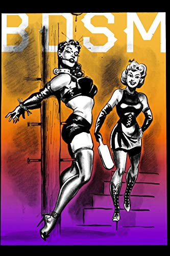 BDSM: 20 Pages 6 X 9 Notebook (Journal, Diary, Planner) Vintage Bondage lingerie for women. Sexy art and Pulp comics
