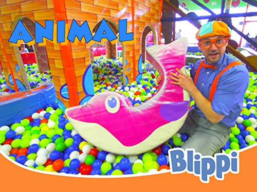 Blippi Visits Indoor Play Place (LOL Kids Club)