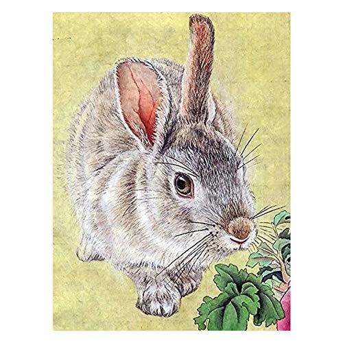 Demarkt - Juego de Pegatinas para Pared de Conejos 5D