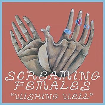 Wishing Well - Single