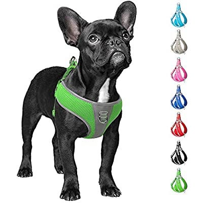 Fida Step-in Dog Harness, Superior Reflective Puppy Vest Harness- All Weather Air Mesh, Adjustable Harness for Small Dogs (S, Green) from Best-Run Technology CO.,Ltd