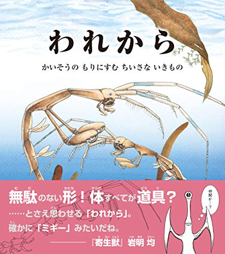 われから: かいそうの もりにすむ ちいさな いきもの (海のナンジャコリャーズ 1)