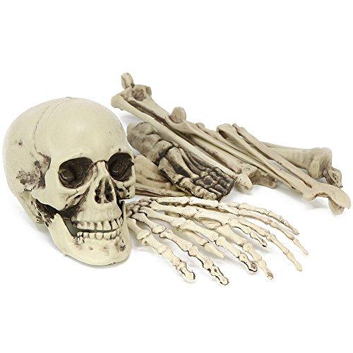 com-four® 9-teiliges Halloween Deko Skelett in Einzelteilen - Knochen als Dekoration für Fasching und Motto-Partys (09 Stück - Knochen)