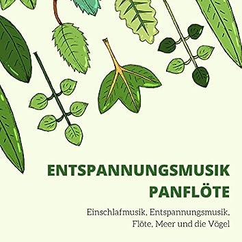 Entspannungsmusik Panflöte: Einschlafmusik, Entspannungsmusik, Flöte, Meer und die Vögel