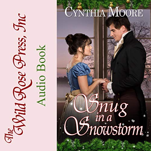 Snug in a Snowstorm audiobook cover art