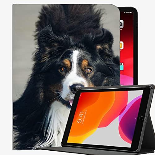Caso en Forma de iPad Pro 9.7 Pulgadas de 9.7 Pulgadas de la Tableta Solamente (A1673 / A1674 / A1675), Cubierta del Perro Delgado de la Caja del Perro de la montaña Bernese para iPad Pro 9.7