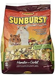 5 Best Hamster Foods & Treats (Reviews and Guide) in 2019