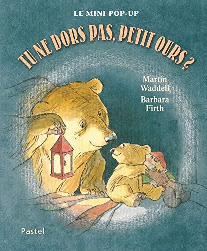 Tu ne dors pas, Petit Ours ?: Can't You Sleep, Little Bear?