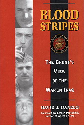 Blood Stripes: The Grunt's View of the War in Iraq