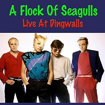 A Flock Of Seagulls Live At Dingwalls