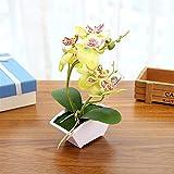 Xuping shop 1 set de decoración de moda para plantas artificiales en maceta, 2 tenedores Phalaenopsis bonsai creativo para decoración del hogar, boda, suministros de bricolaje (color verde)