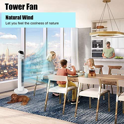 Gotoll Ventiladores de torre