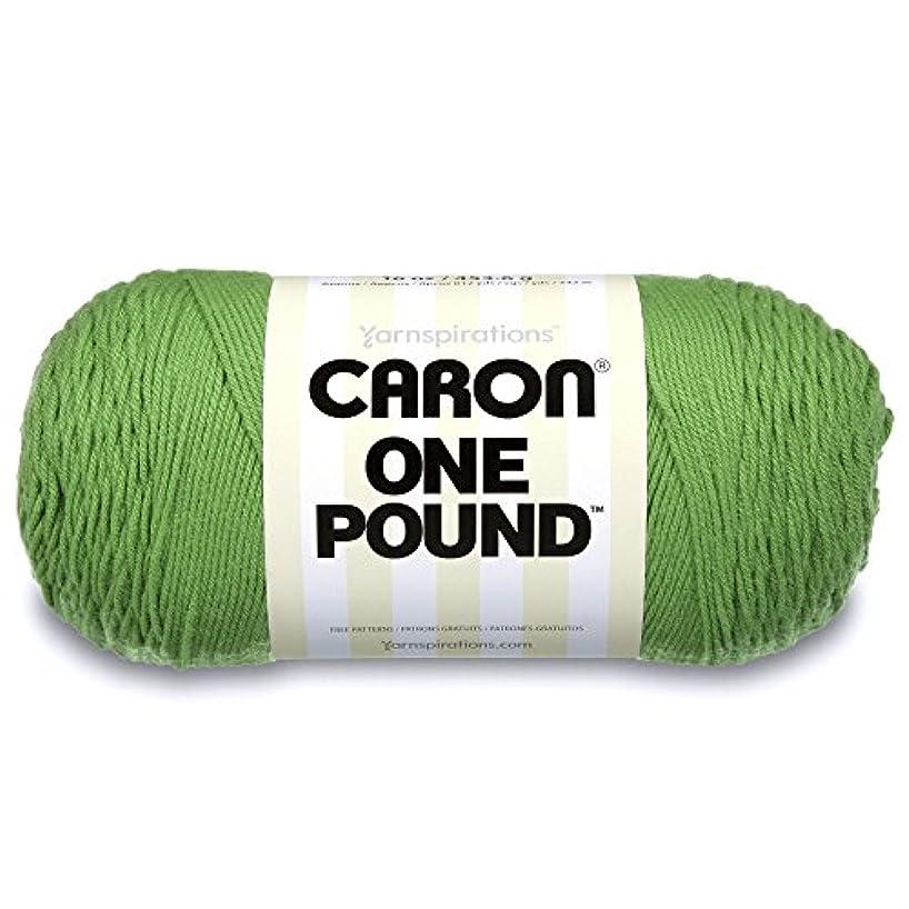 Caron  One Pound Solids Yarn - (4) Medium Gauge 100% Acrylic - 16 oz -  Grass Green- For Crochet, Knitting & Crafting