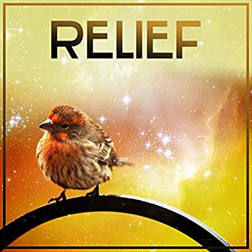 Relief – Nature Sounds for Relaxation, Deep Sleep, Stress Free, Healing Water, Relaxing Waves, Sounds of Sea, Rest, Peaceful Mind