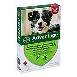 ADVANTAGE 250 Lösung f.Hunde 10-25 kg 4 St