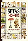 Setas y hongos (El sabor de nuestra tierra)