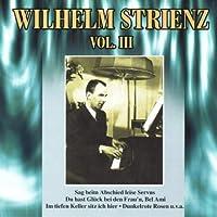 Wilhelm Strienz Vol. III by WILHELM STRIENZ (2013-02-05)